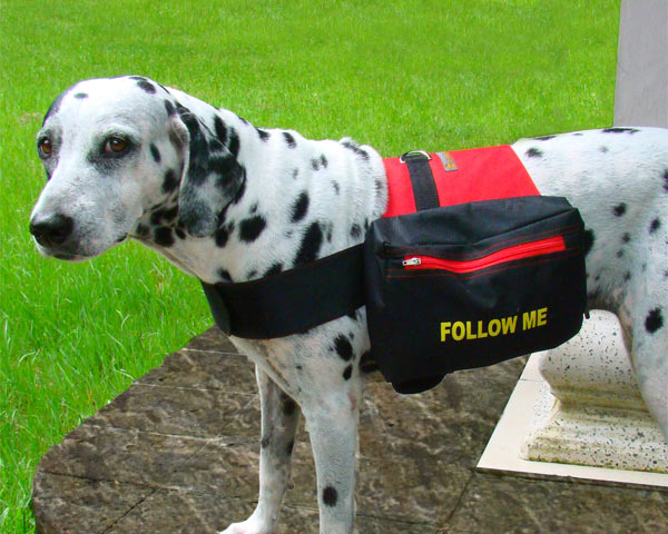 dog-backpack-m red