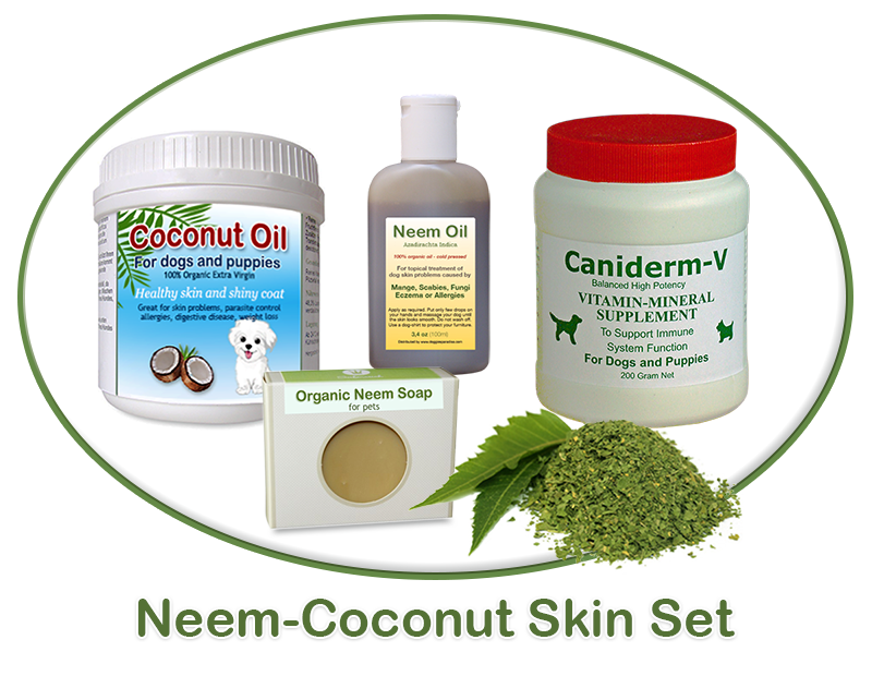 neem coconut skin treatment for dogs