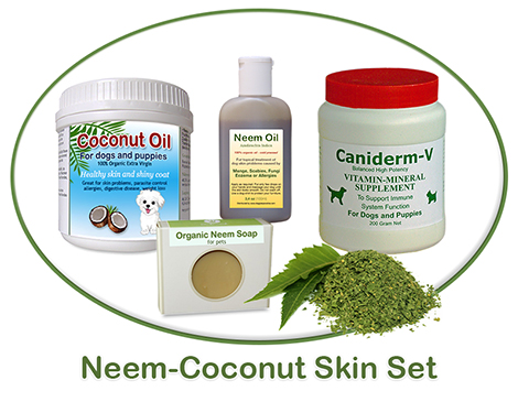 neem coconut skin treatment