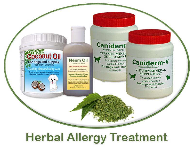 Dog Medication For Food Allergies