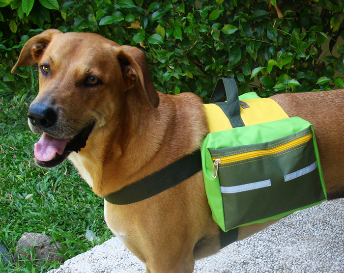 dog backpack breeze