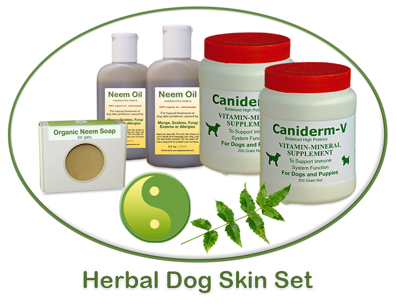 dog skin treatment